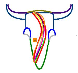 cow head v03